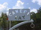 until next year, caneel!